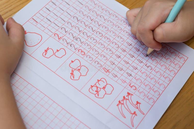 Il bambino impara scrivere i numeri arabi dalla seguente guida fotografia stock libera da diritti