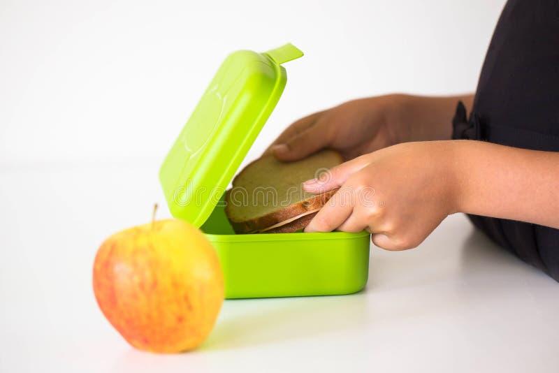 Il bambino mette il panino del pane di segale nel lunchbox immagine stock libera da diritti