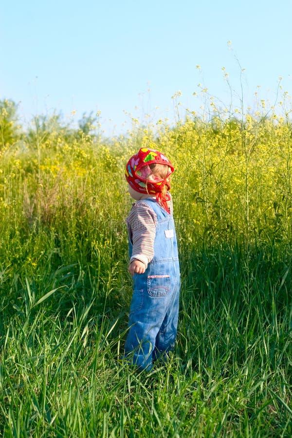 Download Il Bambino Piacevole Nella Tuta Dei Jeans E La Bandana Rossa Colgono I Fiori Fotografia Stock - Immagine di jeans, outing: 30829672