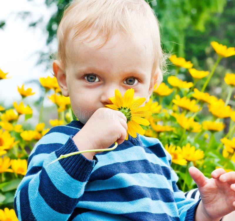 Il bambino sente l'odore del fiore giallo fotografie stock libere da diritti