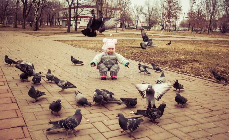 Il bambino sta giocando con i piccioni immagini stock libere da diritti