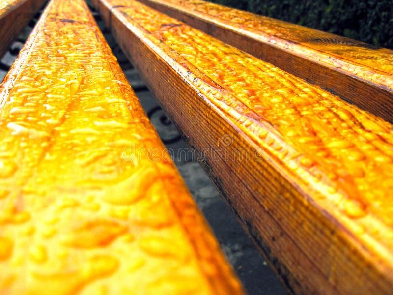 Il banco laccato di legno è coperto di gocce dopo pioggia immagini stock