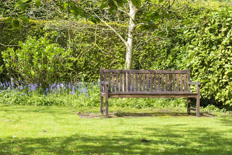 Il banco solo del giardino ha messo in un angolo tranquillo di un giardino immagini stock libere da diritti