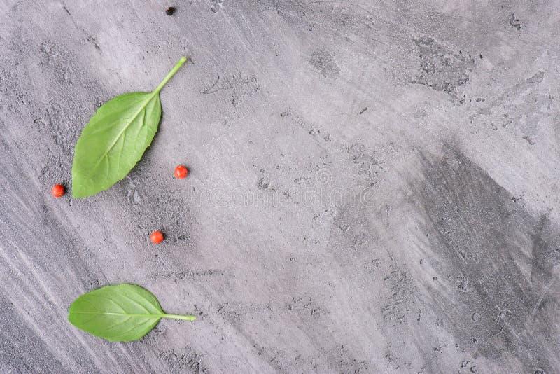 Il basilico va con pepe su una superficie di calcestruzzo fotografie stock libere da diritti