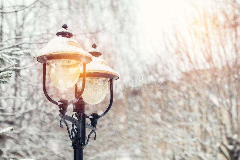 Il bello fondo dell'inverno con gli alberi riguarda il lig della via e della neve fotografia stock libera da diritti