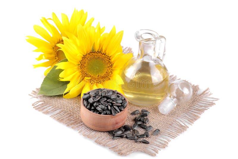 il bello girasole giallo con la foglia e olio di girasole e semi su un bianco ha isolato il fondo fotografia stock libera da diritti