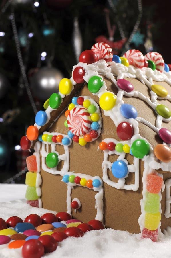 Il bello Natale presenta la regolazione davanti all'albero di Natale, caratterizzante una casa di pan di zenzero immagini stock libere da diritti