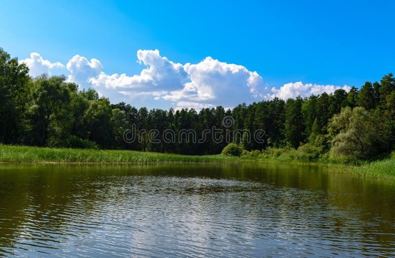 Il bello paesaggio con cielo blu e le nuvole bianche ha riflesso in chiaro l'acqua di fiume Estate idillica fotografia stock libera da diritti