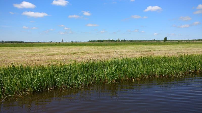 Il bello paesaggio in Frisia fotografia stock