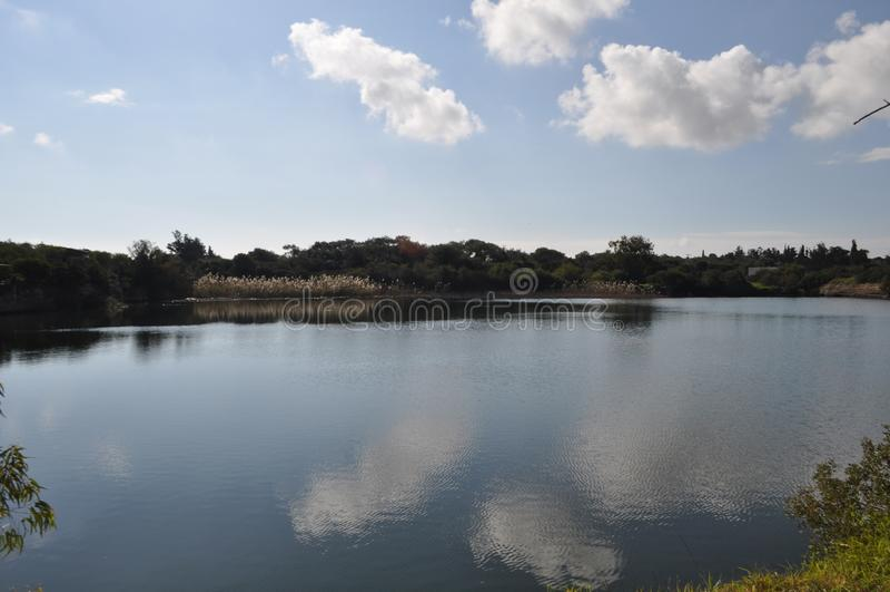 Il bello paesaggio naturale del lago Athalassas della zona umida nel Cipro fotografia stock libera da diritti