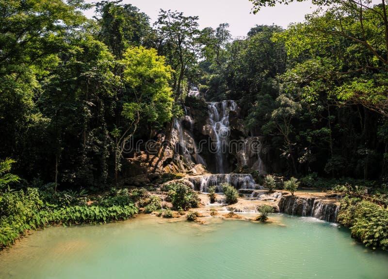 Il bello tat Kuang Si Waterfalls, provincia di Luang Prabang, Laos fotografia stock libera da diritti