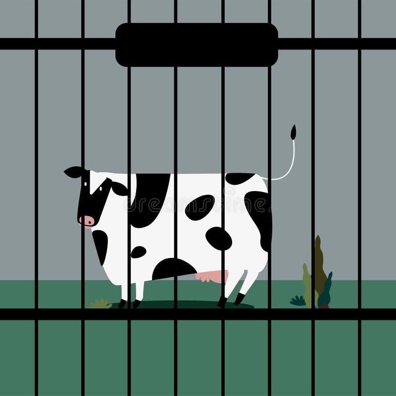 Il bestiame triste intimorisce nella cattività illustrazione di stock