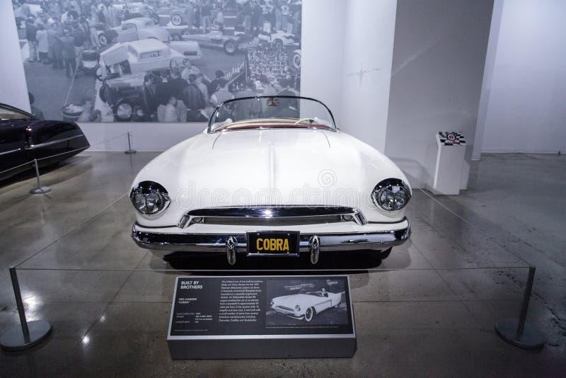 Il bianco Hansen 1953 ha soprannominato la cobra fotografie stock libere da diritti