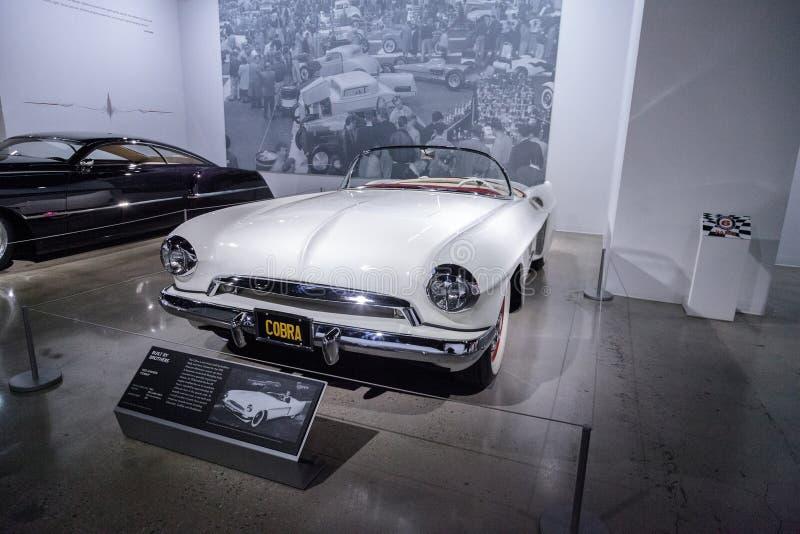 Il bianco Hansen 1953 ha soprannominato la cobra immagine stock