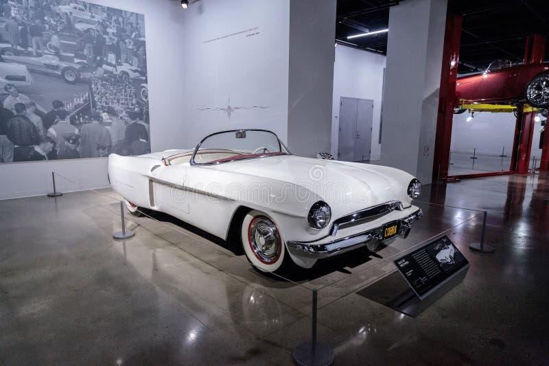 Il bianco Hansen 1953 ha soprannominato la cobra fotografia stock