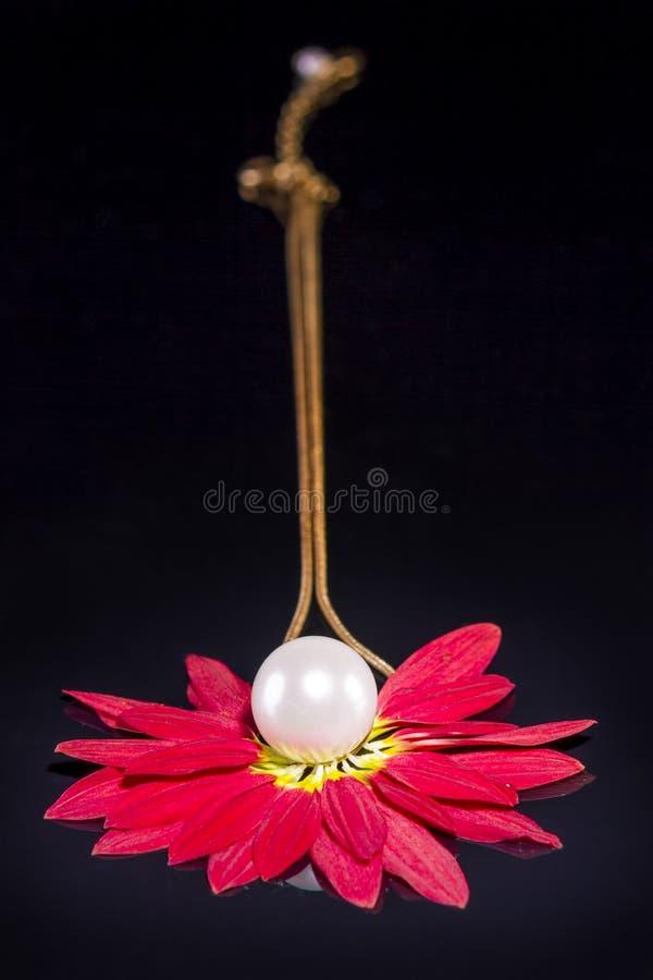 Il bianco imperla la collana sopra i petali rossi sul nero fotografia stock