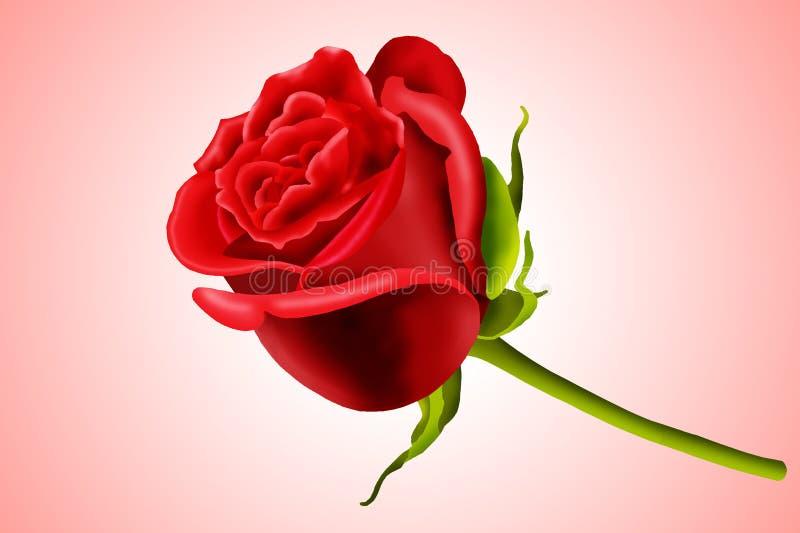 Il biglietto di S. Valentino è aumentato illustrazione di stock