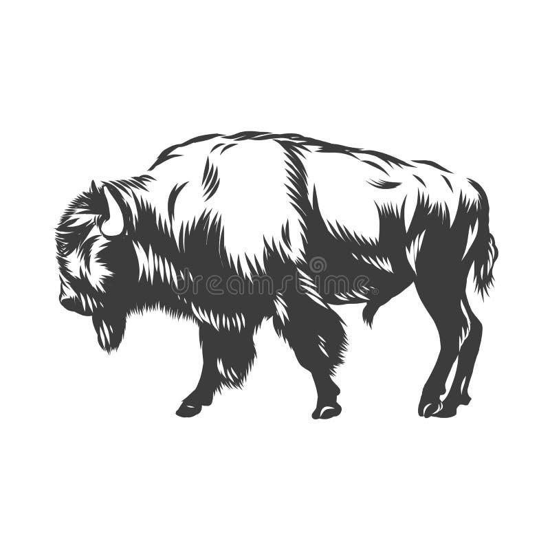 Il bisonte americano ha inchiostrato il vettore illustrazione vettoriale