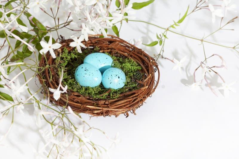 Il blu del nido Eggs 2 fotografie stock