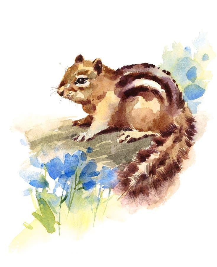 Il blu della tamia fiorisce l'illustrazione disegnata a mano del roditore dell'animale selvatico dell'acquerello isolata su fondo illustrazione vettoriale
