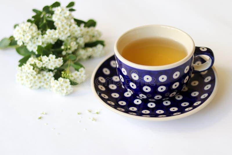 Il blu ha punteggiato il piattino e la tazza ceramici con tè su fondo bianco con i piccoli fiori bianchi fotografie stock libere da diritti