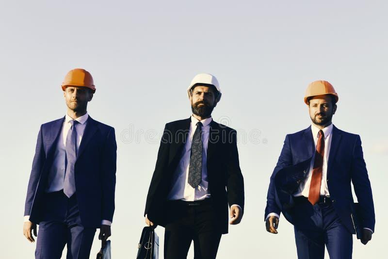Il bordo degli architetti porta i vestiti, i legami e gli elmetti protettivi sul fondo del cielo blu I capi con la barba ed i fro fotografie stock libere da diritti