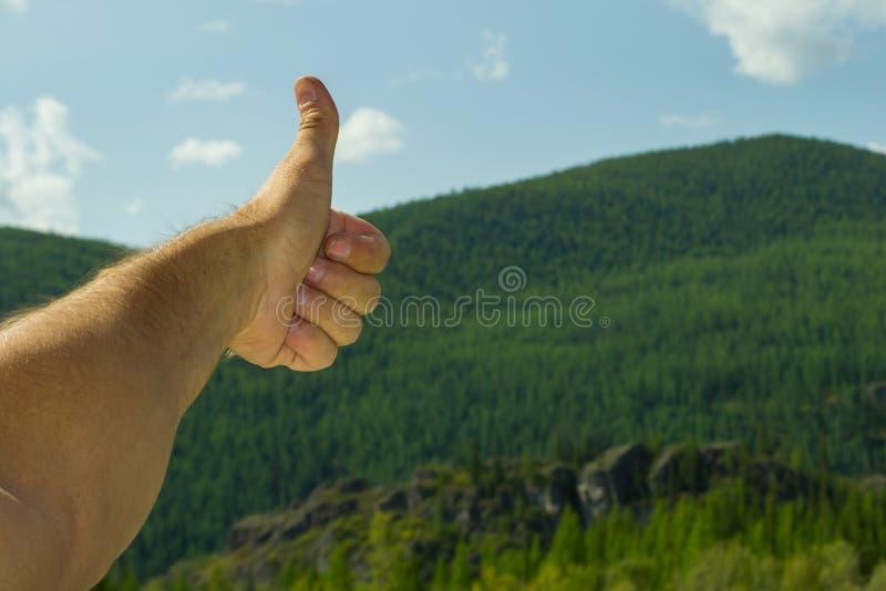 Il braccio del ` s dell'uomo, coperto di capelli, sta mostrando il segno del dito u fotografie stock libere da diritti