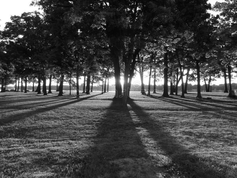 Il buio dell'alba fotografia stock