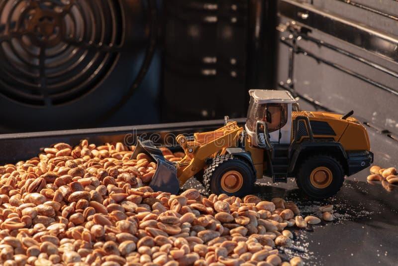 Il bulldozer giallo del giocattolo raccoglie i dadi arrostiti nel forno immagine stock