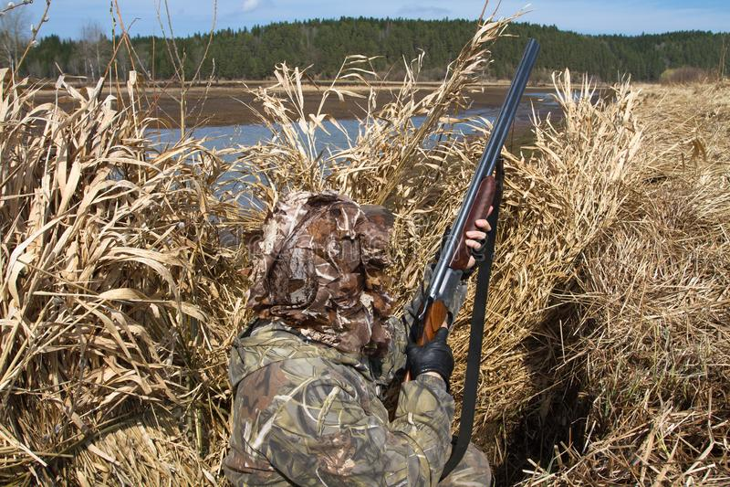 Il cacciatore dell'anatra si è nascosto nei ciechi cercare delle canne fotografie stock