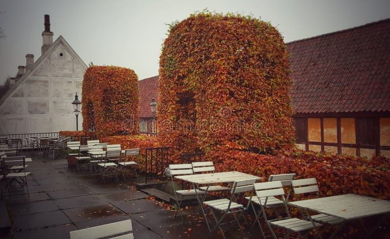 Il café all'aperto della vecchia città, Aarhus Danimarca immagine stock