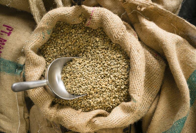 Il caffè crudo semina il fagiolo in serie dell'agricoltura della borsa di tela da imballaggio del mestolo immagine stock libera da diritti