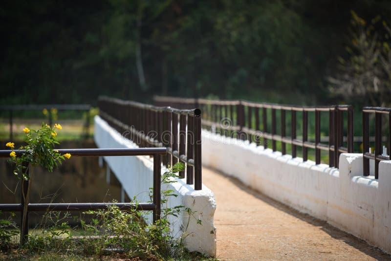 Il canale del ponte immagini stock libere da diritti