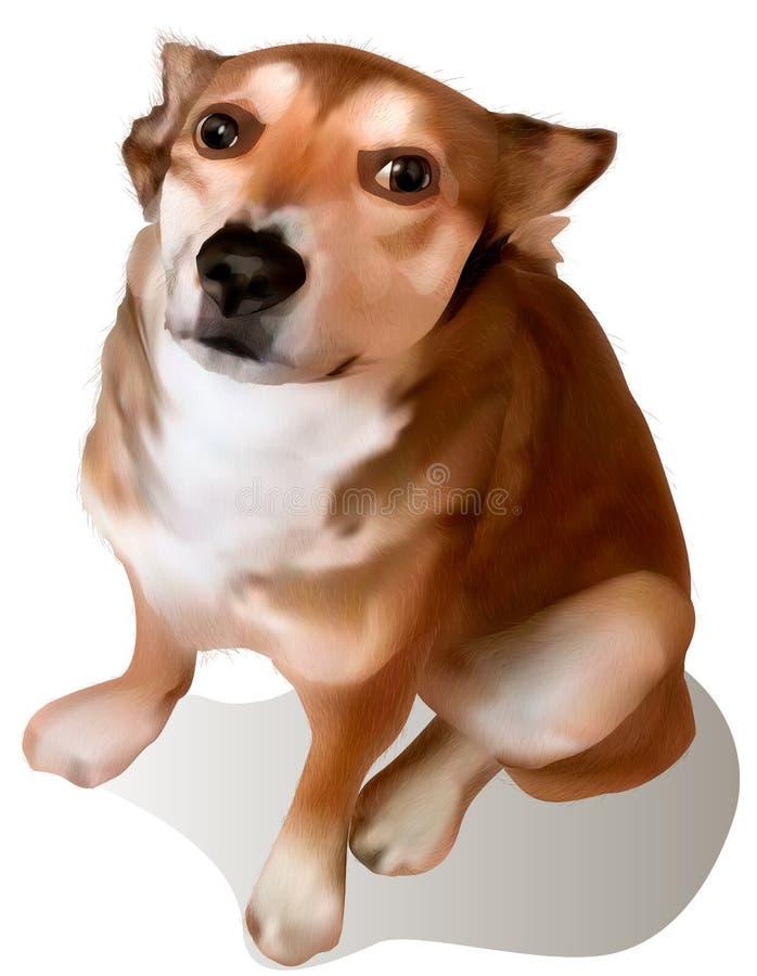 Il cane astuto esamina i vostri occhi illustrazione di stock