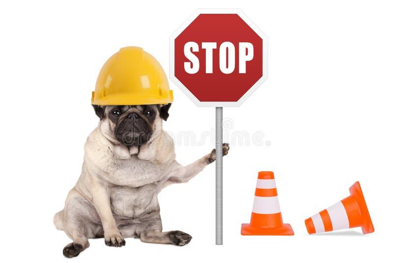 Il cane del carlino con il casco di sicurezza giallo del costruttore e la fermata rossa firmano sul palo immagine stock