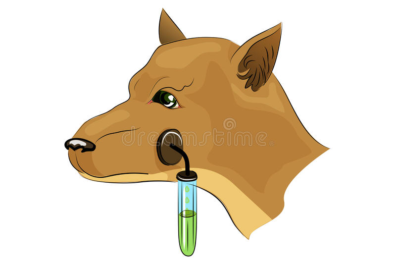 Il cane di Pavlov esperimenti illustrazione vettoriale