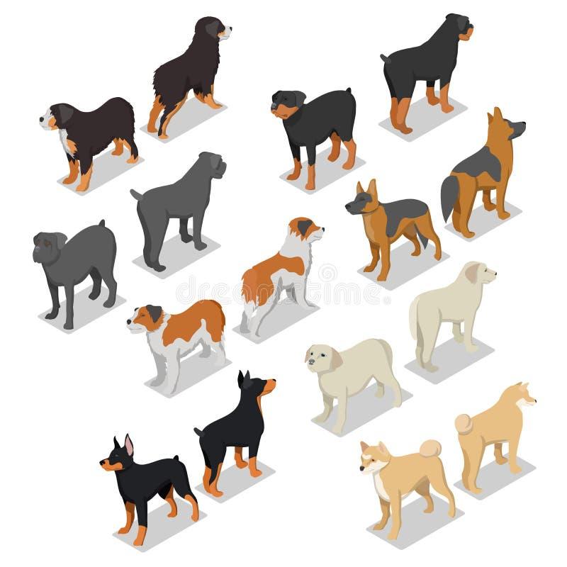 Il cane isometrico cresce con Rottweiler, il documentalista ed il doberman royalty illustrazione gratis