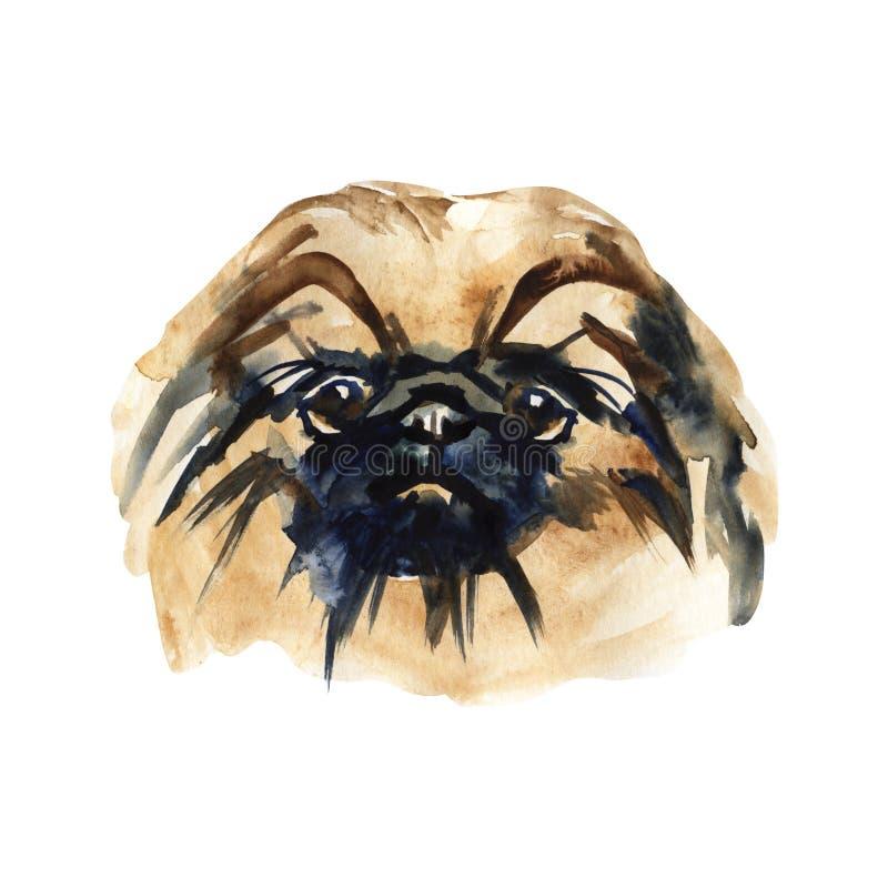 Il cane sveglio del ritratto ha isolato Illustrazione disegnata a mano dell'acquerello Cane popolare della razza Progettazione de royalty illustrazione gratis