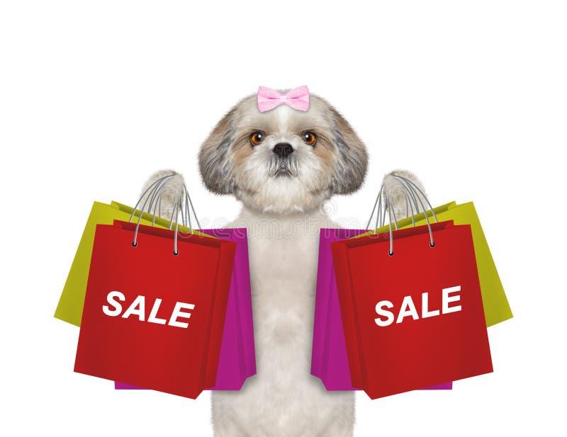 Il cane va a fare spese e vendite immagini stock libere da diritti