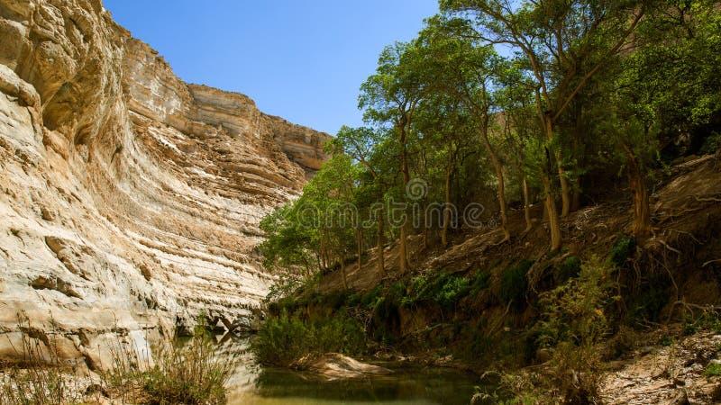 Il canyon fotografia stock