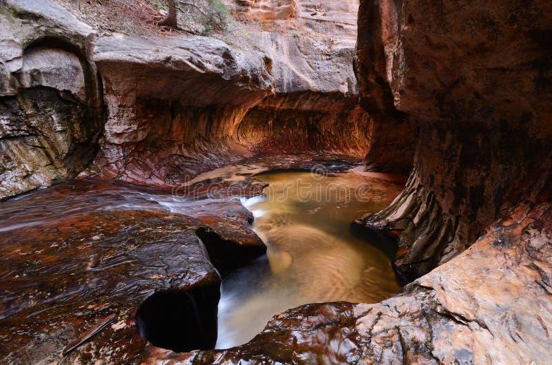 Il sottopassaggio nel parco nazionale di Zion fotografia stock libera da diritti