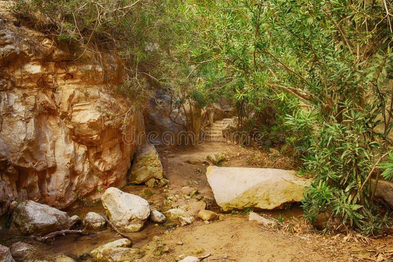 Il canyon di Avakas immagini stock
