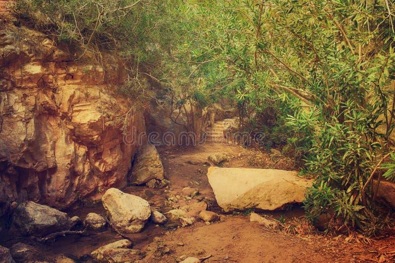 Il canyon di Avakas fotografia stock libera da diritti