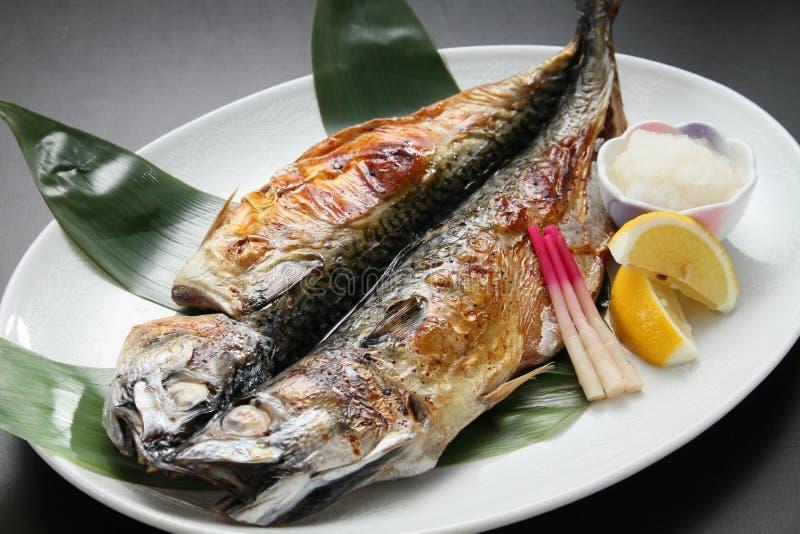 Il capitolo del meglio di Rokkai ha fritto il festival di cucina dello sgombro su bianco fotografia stock libera da diritti