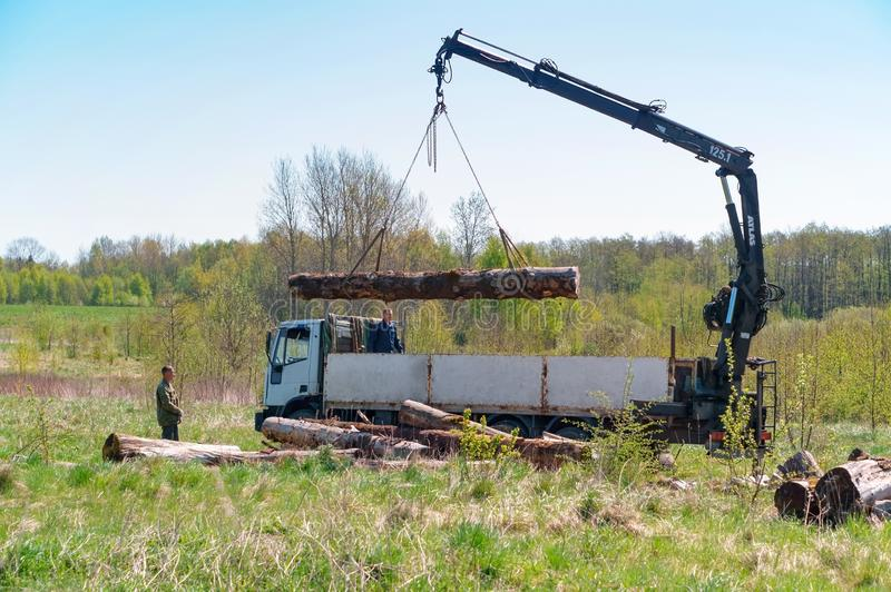 Il caricamento collega il camion, gru per legname di carico immagini stock