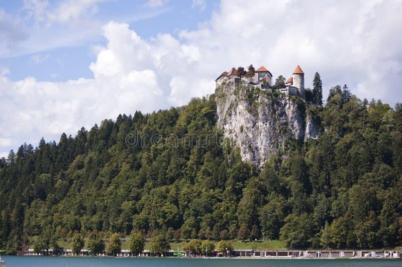 Il castello alla scogliera fotografia stock libera da diritti