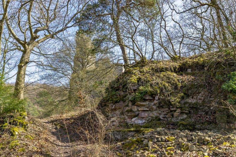 Il castello di Altenbaumburg è la rovina di un castello del dente cilindrico su un Abo della cresta immagine stock libera da diritti