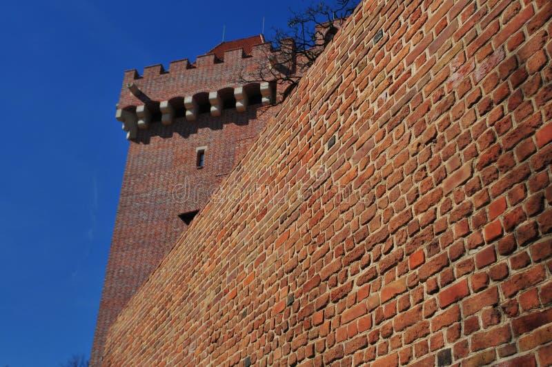 Il castello reale a Poznan immagini stock libere da diritti