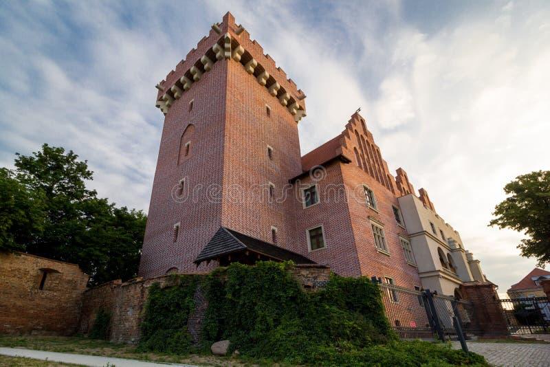 Il castello reale a Poznan fotografia stock