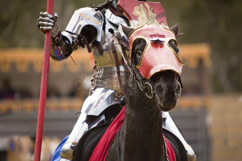 Il cavaliere immagine stock